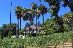 healdsburg-bed-and-breakfast-vineyard-lodging-1