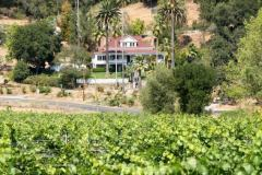 healdsburg-boutique-inn-vineyard-views-rafordinn-1g