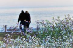 moonstone-beach-romantic-getaway