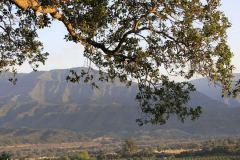 ojai-retreat-ojai-valley-california-about