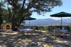 ojai-valley-lodging-ojai-retreat-panoramic-views
