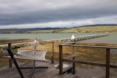 point-reyes-inverness-tomales-bay-vacation-rental-15